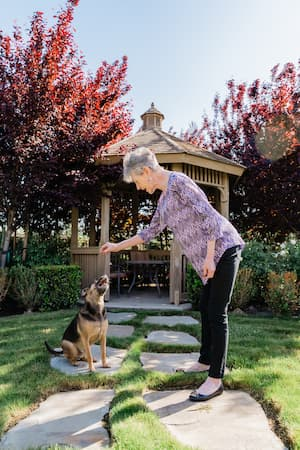 woman giving a sitting dog a treat